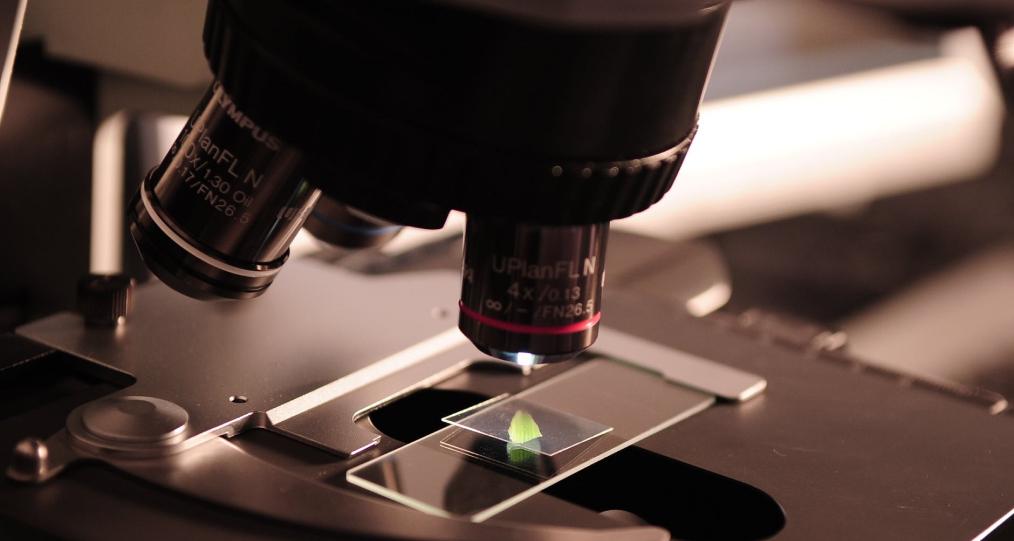 accuracy plus medical lab